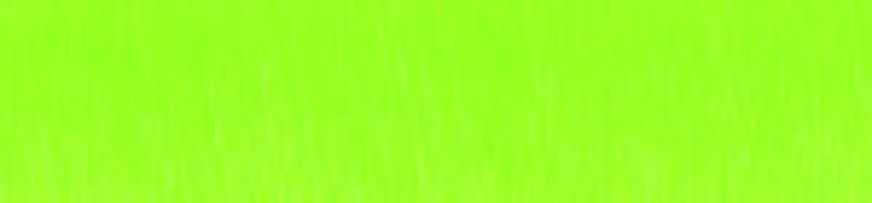 Aluminium lijst - NIELSEN - Profiel 221 - Cyber green 221-215