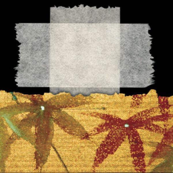 Lineco Tissue plakband