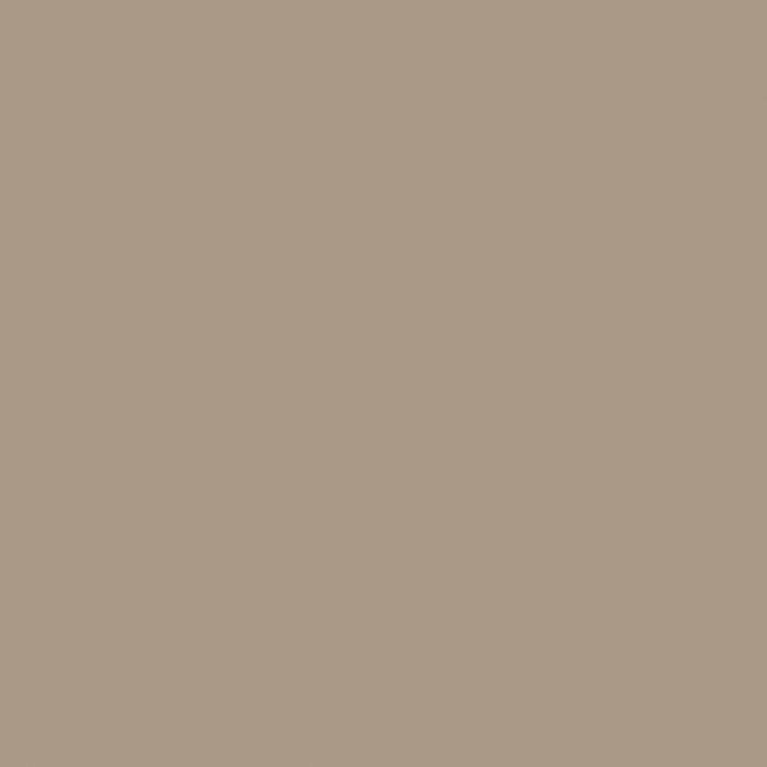 Passe-partout - ARTIQUE - Khaki - A4809
