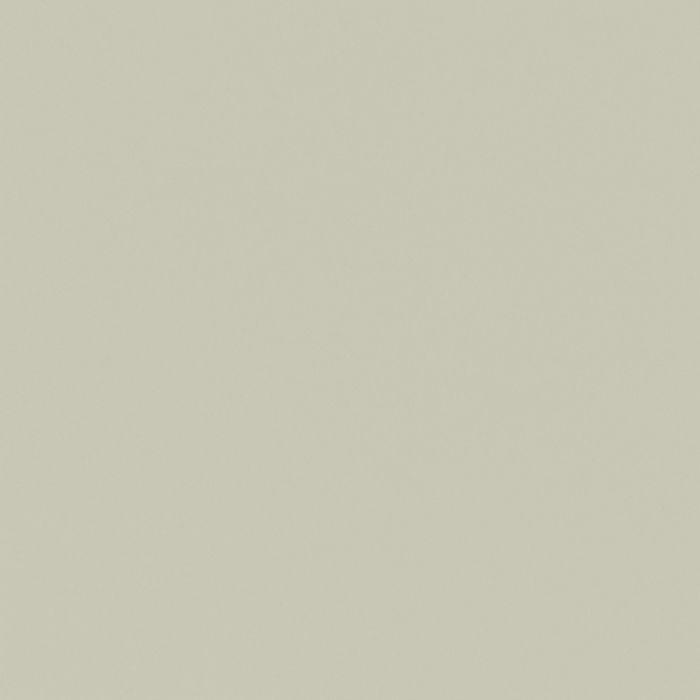 Passe-partout - ARTIQUE - Lichen a4975