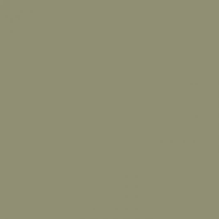 Passe-partout - ARTIQUE - Olive Grey A4930